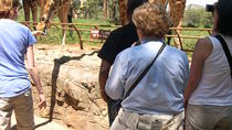 Day Tour from Nairobi: David Sheldrick Elephant Orphanage and Giraffe Center, Nairobi, null