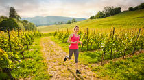 3-Day Trail and Road Running Tour of Sonoma Wine Country, Healdsburg, Running Tours