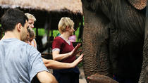 2-Day Elephant Experience from Chiang Mai, Chiang Mai, Multi-day Tours