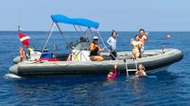Private Charter: Kealakekua Bay Snorkel and Wild Dolphin Swim, Big Island of Hawaii, Snorkeling