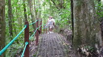 Combination Tour with Hanging Bridges Waterfall Volcano Hike and Hot Springs, La Fortuna, Nature &...