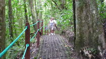 Hanging Bridges and La Fortuna Waterfall Nature Hike, La Fortuna, Hiking & Camping