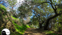 Half Day Mountain Bike Tour Near Orange County, Anaheim & Buena Park