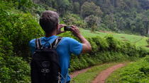 Full-Day Hike and Zipline in the Mae Sa Valley from Chiang Mai, Chiang Mai, Hiking & Camping