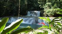 Private YS Falls Tour from Montego Bay, Negril, Private Sightseeing Tours