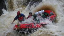 Extreme Wairoa River Grade 5 Rafting , Taupo, White Water Rafting & Float Trips