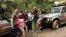3-Day Great Ocean Road Camping Tour Including Twelve Apostles, Loch Ard Gorge and Apollo Bay,...