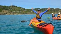 Byron Bay Dolphin Sea Kayak Tour, Byron Bay