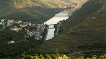 Douro Experience Private Tour, Porto
