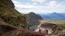 Mt Tarawera Volcanic Guided Hike Experience, Rotorua, Walking Tours