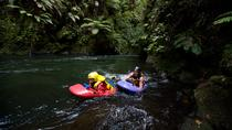 Whitewater Sledging Adventure, Rotorua, Other Water Sports