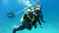 Open Water Scuba Certification, Oahu, Scuba & Snorkelling