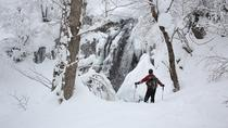 Winter White Forest and Frozen Waterfalls in Takayama with Snowshoeing, Takayama, Ski & Snow