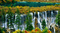 Private 3-Day Chengdu and Jiuzhaigou Guided Flight Tour, Chengdu, Multi-day Tours