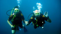 Private Scuba Diving Trip to El Toro Marine Reserve in Mallorca, Mallorca, Private Tours