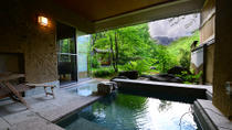 Overnight Stay at Senjuan Ryokan with Onsen and Meals, Japan, Overnight Tours