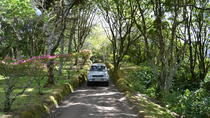 8-Hour Custom Small Group Tour in 4x4 Vehicle, Ponta Delgada, Private Tours