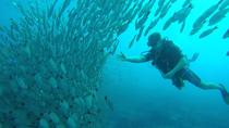 Scuba Diving at Playa Hermosa, Coco and Ocotal Beach, Playa Hermosa, Scuba Diving