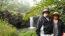 Road to Hana Tour: Swim in Waterfalls With Your Own Private Guide, Hawaii, Family Friendly Tours & ...