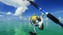 Half-Day Fishing Trip from Abu Dhabi, Abu Dhabi, Fishing Charters & Tours