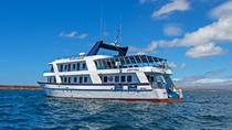 Galapagos Cruise: 4-Day Tour to Santa Cruz, Genovesa and San Cristobal Islands, Galapagos Islands