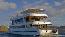 Galapagos Islands Luxury Cruise: 6-Day Tour with a Naturalist Aboard the 'Odyssey', Galapagos...
