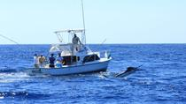 Sport Fishing in the Pacific from Guatemala City, Guatemala City, Fishing Charters & Tours