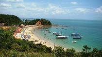 Tropical Island Tour Including Itaparica Island, Salvador da Bahia, Day Cruises