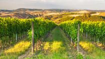 Chianti San Gimignano and Wine Roads from Florence, Florence, Day Trips