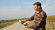 4-Hour Small-Group Champagne Region Vineyard Tour from Epernay with Wine Tasting and Picnic, Reims, ...
