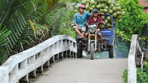 2-Day Small Group Tour to Ho Chi Minh and Mekong Delta from Ho Chi Minh City, Ho Chi Minh City, ...