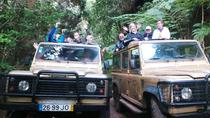 Madeira's Traditions and Nature Jeep Tour, Funchal