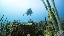 2-Tank Boat Dive from English Harbour, Antigua, Scuba Diving