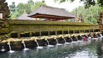 Private Ubud Tour: Batubulan Village, Tirta Empul Temple, Monkey Forest with Lunch, Ubud, City Tours