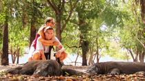 3-Day Komodo National Park Tour from Labuan Bajo, East Nusa Tenggara, Multi-day Tours
