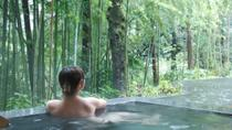 Overnight Stay at Kinnotake Tonosawa Ryokan with Onsen and Breakfast, Japan, Overnight Tours