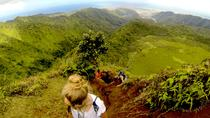 Waterfall and Ka'au Crater Loop 5-Mile Hike Including Lunch, Oahu, Day Trips