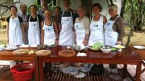 Thuy Bieu Village Tour and Cooking Class from Hue, Hue, Day Trips