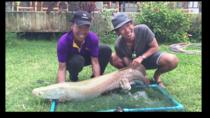 Freshwater Lake Fishing Tour from Koh Samui, Koh Samui, Fishing Charters & Tours