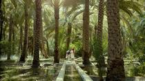 Make your your own Al Ain City Tour - Private Tour from Abu Dhabi, Abu Dhabi