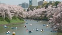 1-Day Tokyo Garden Tour including Breakfast and Lunch, Tokyo, Full-day Tours