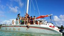 Half-Day Catamaran Cruise and Snorkeling from Punta Cana, Punta Cana, Day Cruises