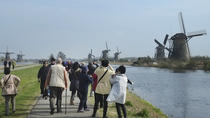 5 hour Rotterdam Kinderdijk Private Sightseeing, Rotterdam, Private Tours