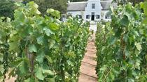 3 Wine Regions Private Guided Tour in Cape Town, Cape Town, Private Sightseeing Tours