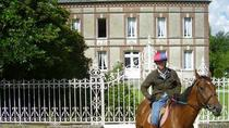 Private Tour: Normandy Thoroughbred Horse Studs with Optional Horseback Riding from Caen, Caen