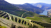 Full-Day Trip in Douro Valley with Lunch, traditional farm visit with tasting and Optional River...