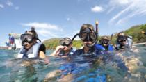 Snorkel Tour in Playa Matapalo, Guanacaste and Northwest, Scuba & Snorkelling