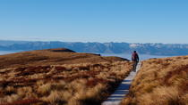 Fiordland Adventure Day Trip from Queenstown , Queenstown, Day Trips
