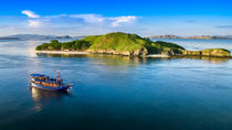 Private 5-Day Komodo National Park Cruise from Labuan Bajo, East Nusa Tenggara, Multi-day Cruises