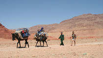 A Itinerant Hiking Trip of 5 Days with Accommodation among Nomads, Marrakech, Hiking & Camping